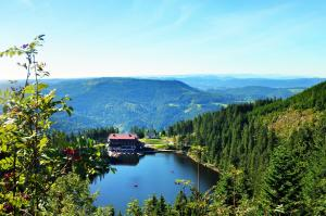 Castles And Palaces Tour Of Bavaria Packages